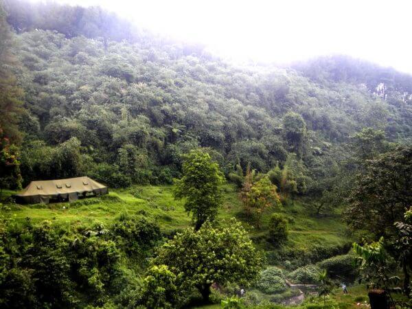 Area Perkemahan - Wana Wisata Curug Nangka